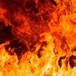 Мужчина погиб на пожаре в Бобруйске