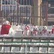 Снеговики украсили футбольный матч в Румынии