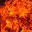 Отец и сын погибли на пожаре под Ляховичами
