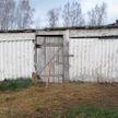 Парни украли с фермы быка и разделали его