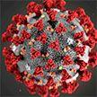 Исследование: мутация может сделать коронавирус более заразным