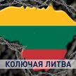Почему Литва отделилась от Беларуси колючей проволокой и каковы будут последствия?