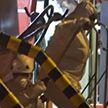 Тела пятерых мигрантов найдены в Средиземном море у побережья Испании