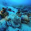 Кладбище древних кораблей обнаружили в Эгейском море