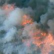 Сильные лесные пожары бушуют в Австралии