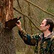 В Беловежской пуще пытаются спасти самое древнее низинное болото Европы