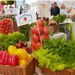 Экспорт белорусской сельхозпродукции в Китай увеличился почти на 90%