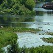 Матрасокрушение в Гродно: девушки, не умея плавать, решили форсировать Неман