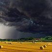 Грозы и дожди ожидаются в Беларуси 30 августа