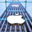 Apple вернет Touch ID в iPhone