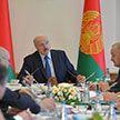 «Допустить ошибки нельзя». О чем говорил Президент на совещании по развитию АПК Витебской области?