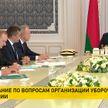 Лукашенко: рост мировых цен на продукты питания должен стать дополнительной возможностью для экономики Беларуси