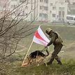 Радикализация протестов: какими методами пользуются Telegram-каналы, чтобы обострить ситуацию в Беларуси?