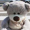 Машина сбила пятилетнюю девочку на глазах у ее матери в Бресте
