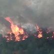 МЧС Беларуси помогает тушить пожары в Турции