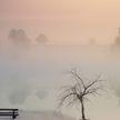 Туман и гололед прогнозируется в Беларуси 1 марта
