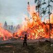 И снова пожары в Сибири. Горят 200 гектаров леса