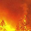 В Лос-Анджелесе горят леса: идет эвакуация населения