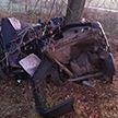 В Оршанском районе 22-летний водитель не справился с управлением и погиб