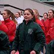Танцевальным флешмобом отметили День Конституции в Гомеле