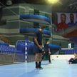 «Мешков Брест» в гандбольной Лиге чемпионов  сыграет с польским «Виве»