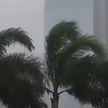 Циклон «Випа» обрушился на Гонконг: ливни и ветер со скоростью 100 км/ч