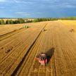 Минсельхозпрод: три области намолотили свыше миллиона тон зерна