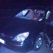 Два автомобиля наехали на пешехода в тёмное время суток на трассе Минск-Витебск