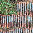 На территории школы в Барановичском районе нашли снаряды времен Великой Отечественной войны