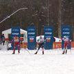 Международная федерация лыжного спорта утвердила календарь проведения Кубка мира по лыжным гонкам