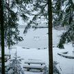 Морозы остаются, к концу недели в Беларуси будет до -25°C: прогноз погоды