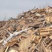 Жители деревни Лопатино жаловались на площадку по переработке промышленных отходов. Госконтроль помог решить проблему