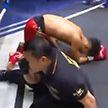 Тайский боксёр нокаутировал судью и соперника (Видео)