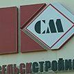 На заводе стройматериалов в Красносельском раскрыли коррупционную схему