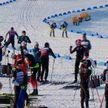 Стартуют первые гонки чемпионата Европы по биатлону в «Раубичах»