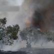 Из-за засухи в Греции вновь полыхают леса