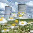 Литовским туристам показали Белорусскую АЭС