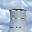 Обеспечение безопасности Белорусской АЭС находится на особом контроле