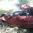 Renault врезался в дерево в Калинковичском районе: водитель погиб