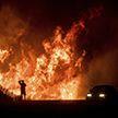 Семья спасается от пожара в Калифорнии (Видео)