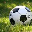 Чемпионат Беларуси по футболу: стартовал 11-й тур