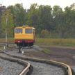 Новый производственный участок с железной дорогой открыли в Ельском лесхозе