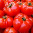 Названы продукты, сочетание которых с помидорами, вызывает изжогу: вы этого точно не знали!