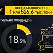 Уборочная-2020: лучший результат – у аграриев Брестской области