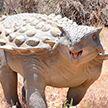 Останки неизвестного вида динозавров нашли на востоке Китая