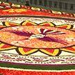 Гигантский ковёр из живых цветов появился в Брюсселе