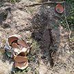 В Индии муж и жена хотели выкопать могилу, но спасли заживо похороненную девочку