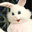 Мужчина в костюме пасхального кролика защитил девушку в США (Видео)