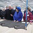 Александр Лукашенко: Модернизация Витебского мехового комбината является подарком народу к 7 ноября