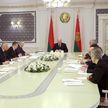 Лукашенко сравнил некоторые действия российских партнёров по закрытию рынка для Беларуси с санкциями